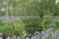natuurbegraafplaatsnieuwehorne_watergang2