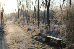 winterspad