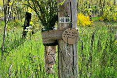 weekendvandebegraafplaats-4